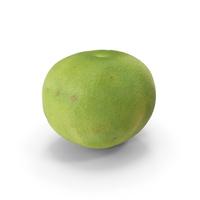 Green Grapefruit PNG & PSD Images