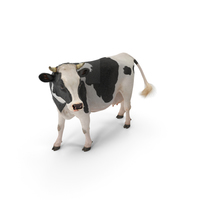 Holstein Cow with Fur PNG & PSD Images