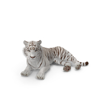 Lying White Tiger PNG & PSD Images