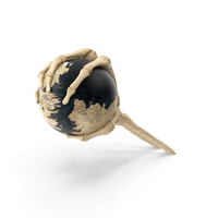 Skeleton Hand Grabbing a Fantasy World Globe PNG & PSD Images