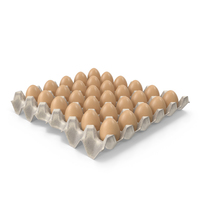Paper Egg Tray PNG & PSD Images
