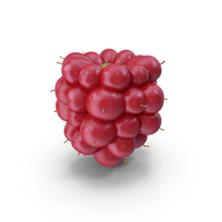 Not Ripe Berry Blackberry Fruit PNG & PSD Images