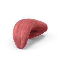Tongue Pose PNG & PSD Images
