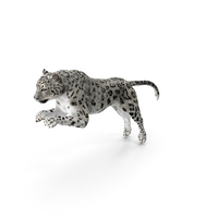 Panthera Uncia Jumping Pose PNG & PSD Images
