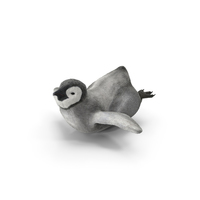 Penguin Baby Swimming Pose PNG & PSD Images