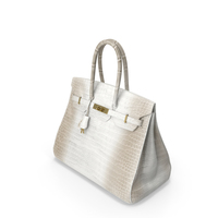 Crocodile Handbag Beige PNG & PSD Images