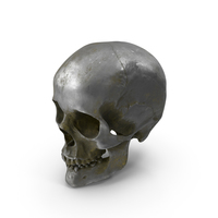 Human Skull Old Silver PNG & PSD Images