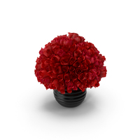 Bunch Of Roses PNG & PSD Images