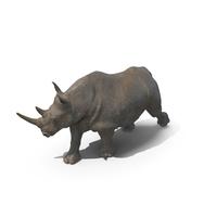 Walking Rhino PNG & PSD Images