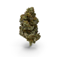 Zkittlez Cannabis Bud PNG & PSD Images