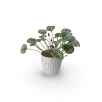 Cyclamen PNG & PSD Images