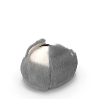 Trapper Winter Hat White Fur PNG & PSD Images