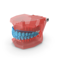 Typodont with Transparent Removable Retainer PNG & PSD Images