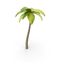 Beach Tree PNG & PSD Images