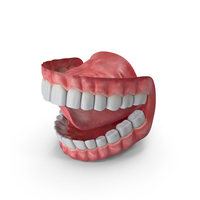 Mouth PNG & PSD Images