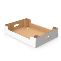Corrugated Tray Box for Vegetables And Fruits PNG & PSD Images