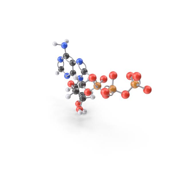 Adenosine Triphosphate Molecule PNG & PSD Images