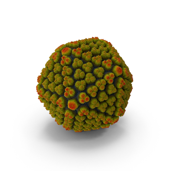 Adenovirus PNG & PSD Images