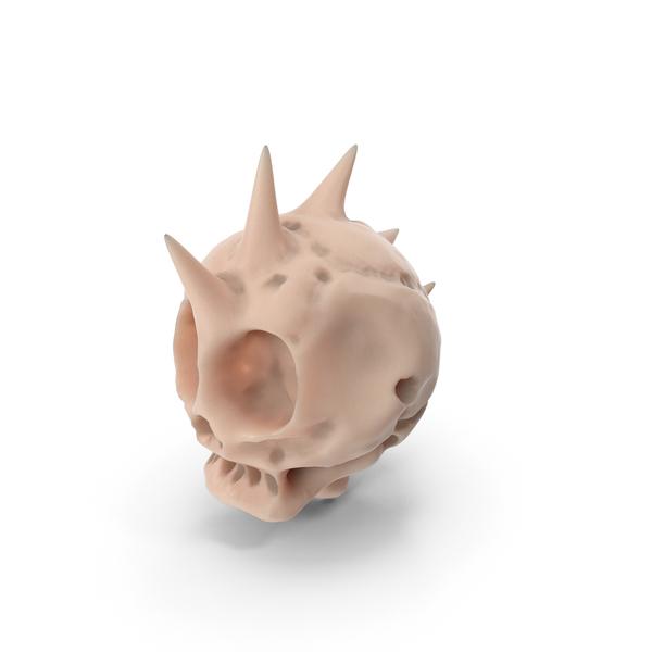 Alien Punk Skull PNG & PSD Images