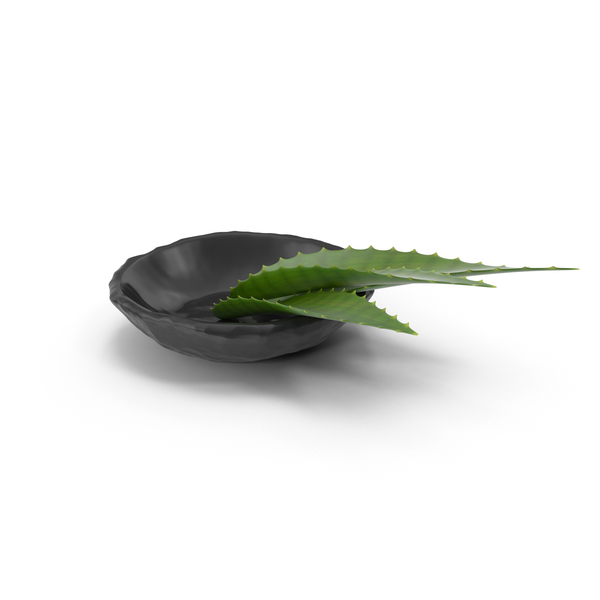 Aloe Leaf on Granite Plate PNG & PSD Images