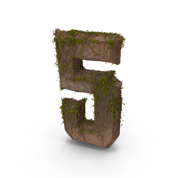 Ancient Stone with Ivy Number 5 PNG & PSD Images