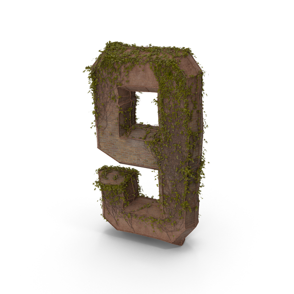 Ancient Stone with Ivy Number 9 PNG & PSD Images