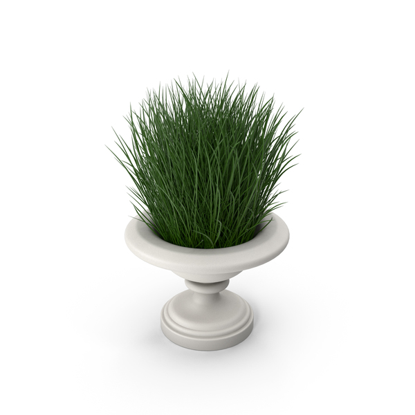 Arch: Architectural Module Vase with Plants PNG & PSD Images