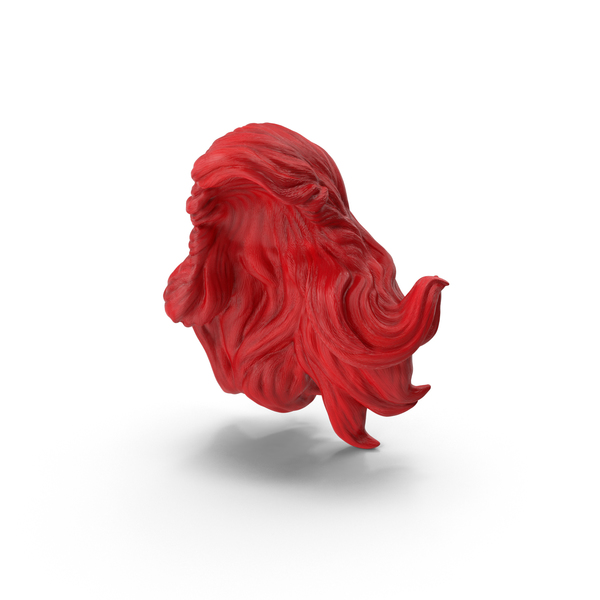 Ariel Wig PNG & PSD Images