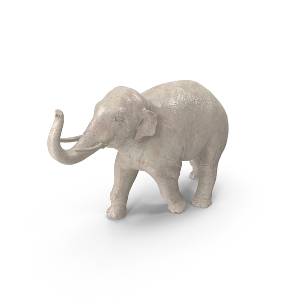 Asian Elephant Statuette PNG & PSD Images