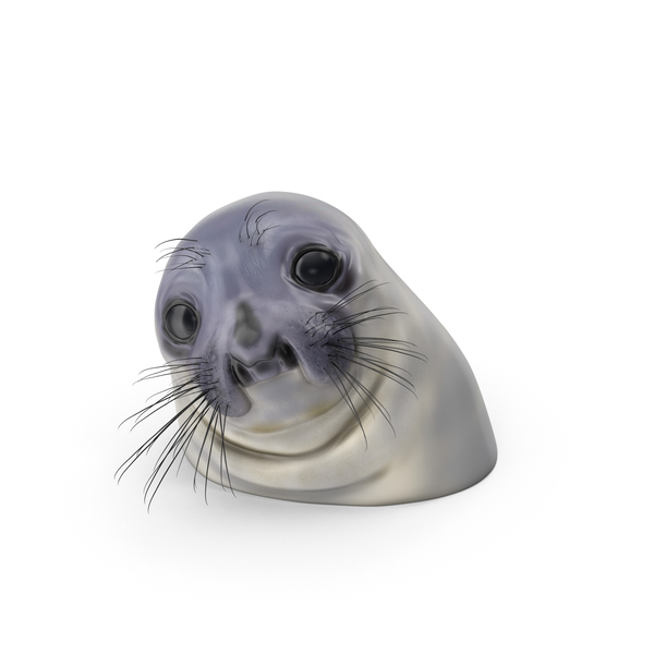 Awkward Moment Seal PNG & PSD Images