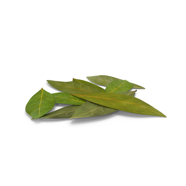 Leaf: Bay Leaves PNG & PSD Images