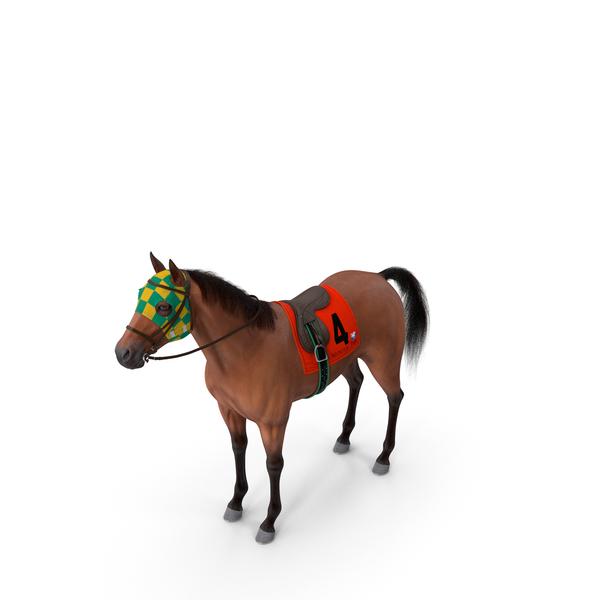Bay Racing Horse Fur PNG & PSD Images