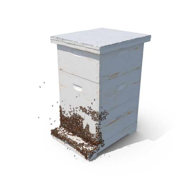 Bee Hive PNG & PSD Images