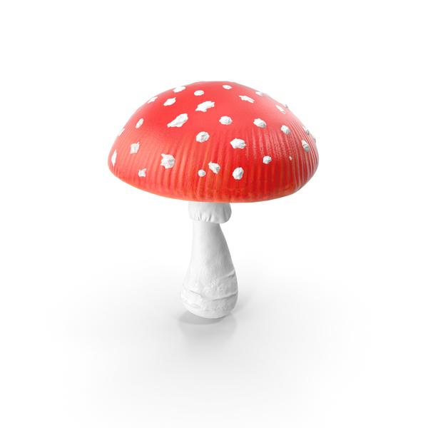 Big Amanita Mushroom PNG & PSD Images