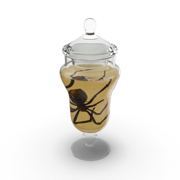 Black Widow Specimen Jar PNG & PSD Images