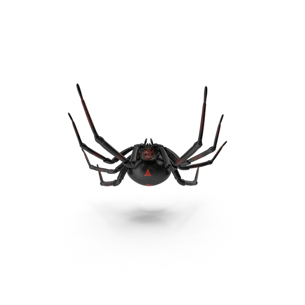 Black Widow Object