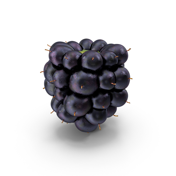 Blackberry Fruit PNG & PSD Images