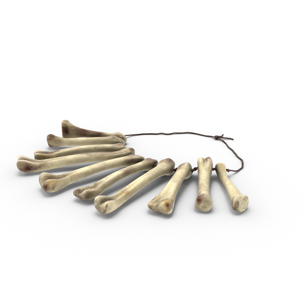 Bone Necklace PNG & PSD Images