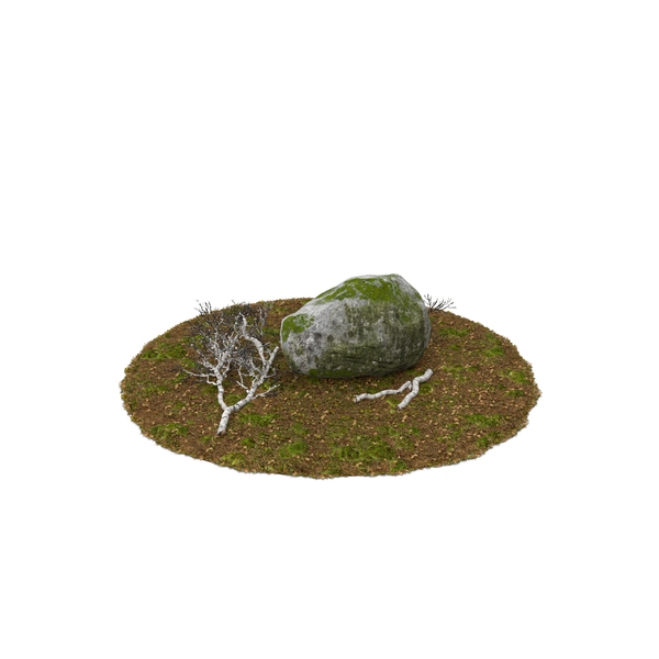 Boulder with Birch Branches Object