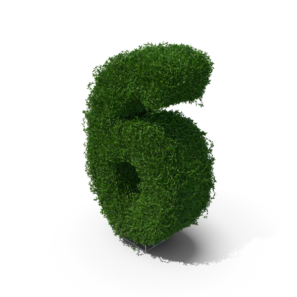 Boxwood Number Six PNG & PSD Images