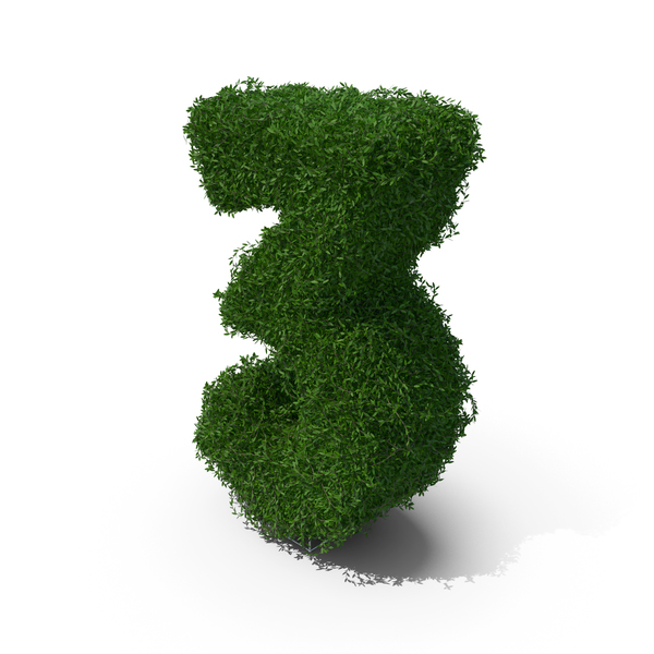 Boxwood Number Three PNG & PSD Images