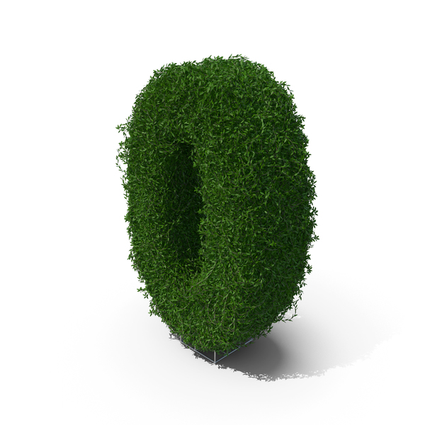 Boxwood Symbol 0 PNG & PSD Images