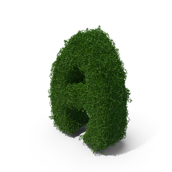 Boxwood Symbol A PNG & PSD Images