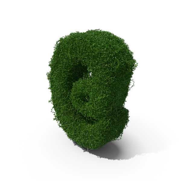 Boxwood Symbol @ PNG & PSD Images