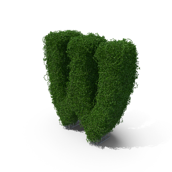 Topiary: Boxwood Symbol W PNG & PSD Images