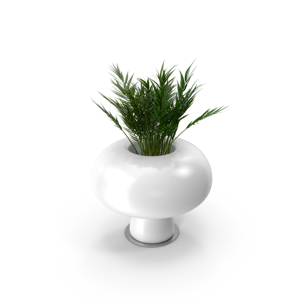 Boyo Vase With Plant Png Images Amp Psds For Download