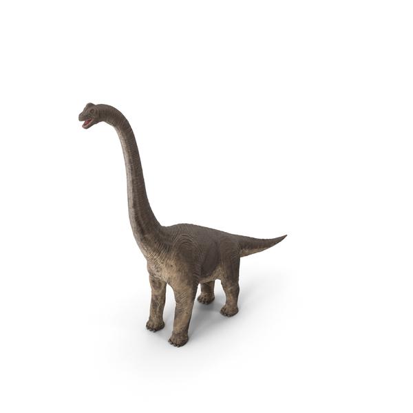 Toy Dinosaur: Brachiosaurus Standing Pose PNG & PSD Images
