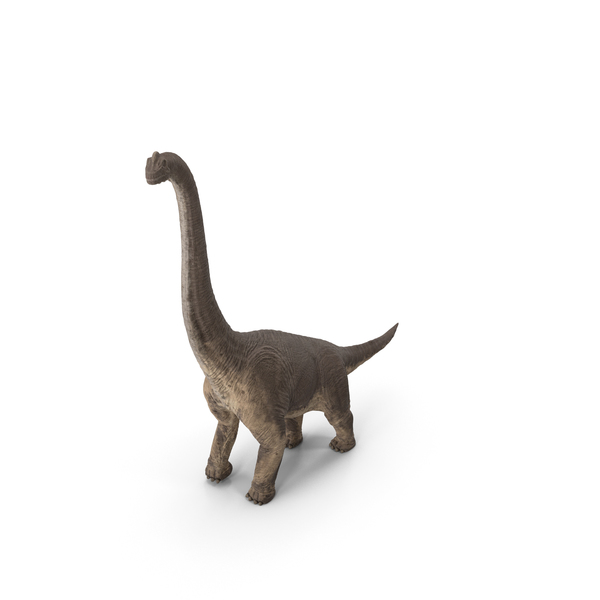 Brachiosaurus Walking Pose PNG & PSD Images