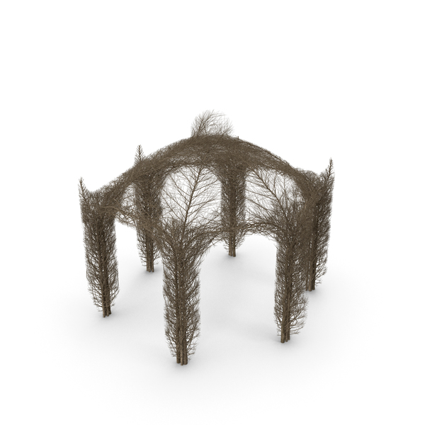 Branch Gazebo PNG & PSD Images