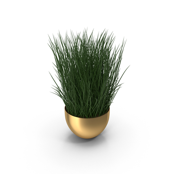 Flower Pot: Brass Plant Bowl PNG & PSD Images